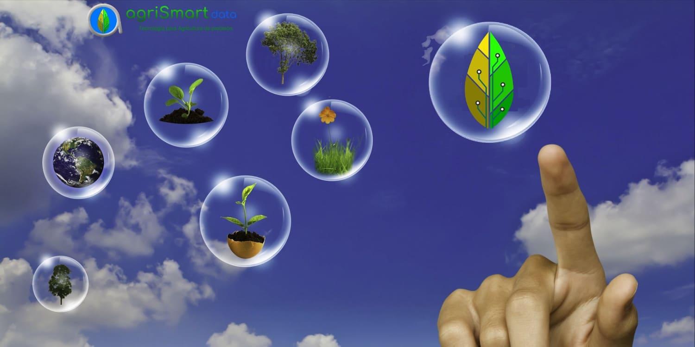 Consultoría en tecnología para la agricultura