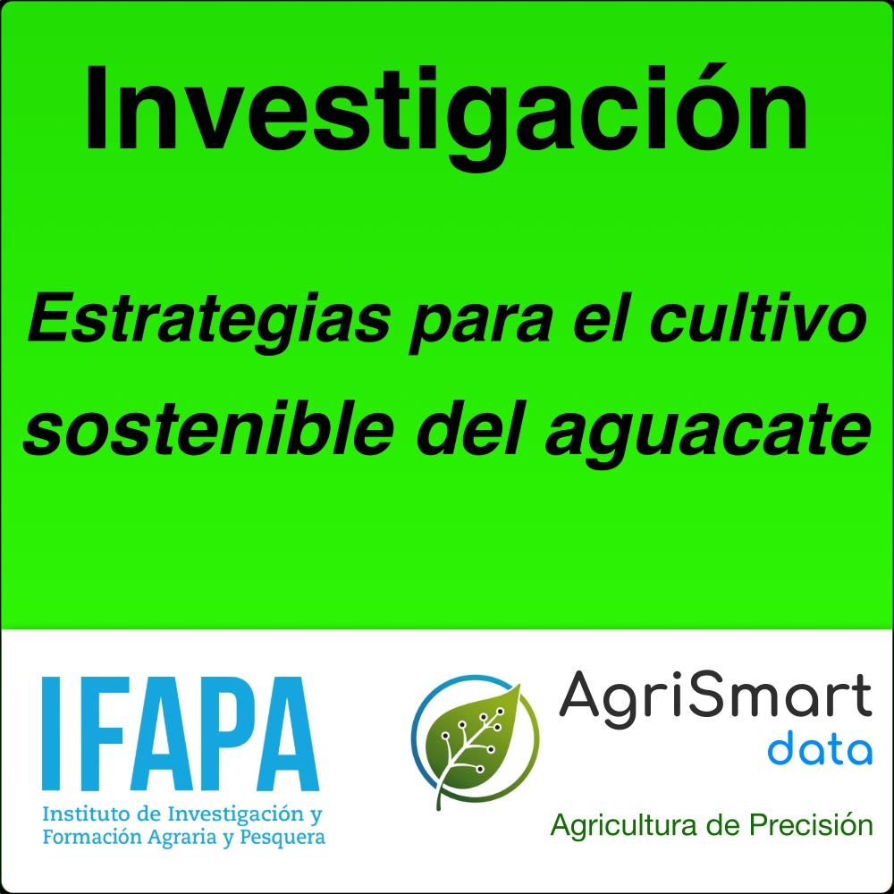 Estrategias para el cultivo sostenible del aguacate