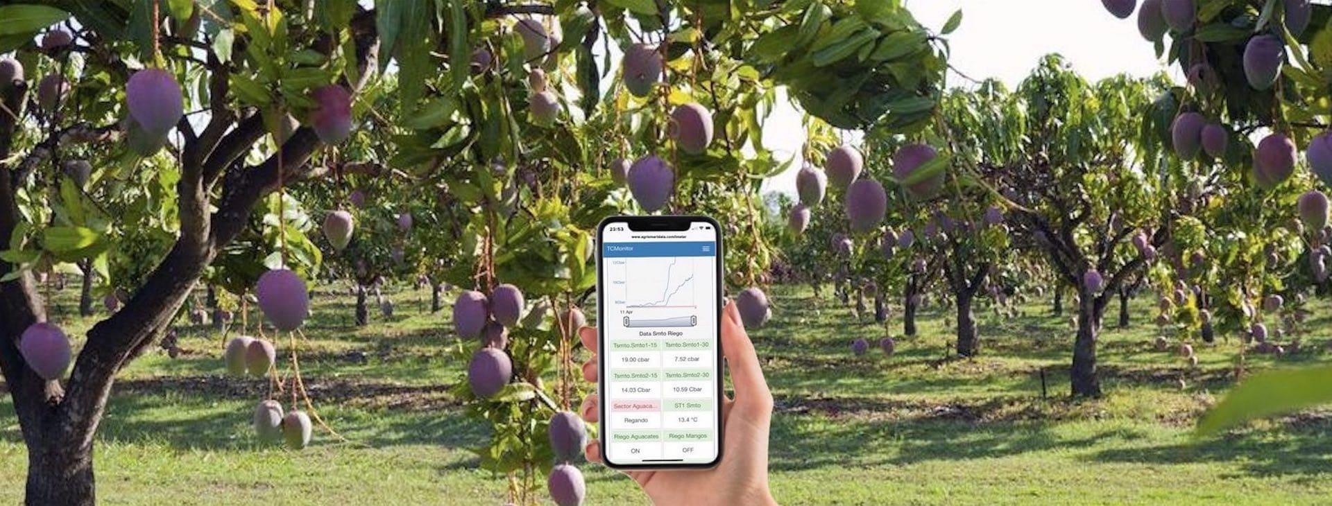 Control y gestión en la Agricultura